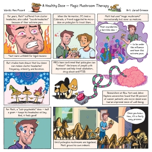 7 Days Magic Mushroom Therapy   Jarad Greene