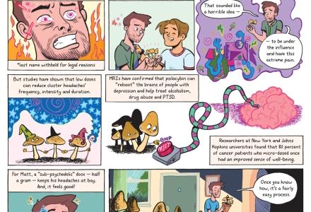 7 Days Magic Mushroom Therapy | Jarad Greene